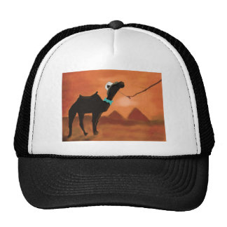 WHERE'S THE SAND DANCERS TRUCKER HAT