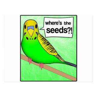 Where's The Seeds? Postcard