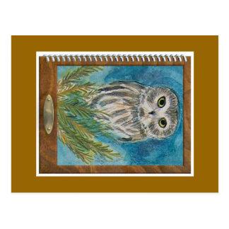 Whet Owl via wildlife watercolor bird painting Postcard
