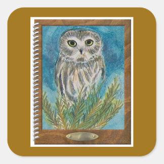Whet Owl via wildlife watercolor bird painting Square Sticker