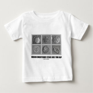 Which Embryonic Stage Are You In? (Embryos) Tee Shirt