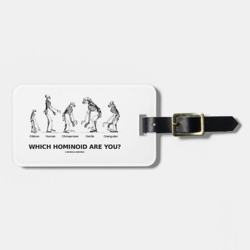 Which Hominoid Are You? (Skeletons Humor) Bag Tags