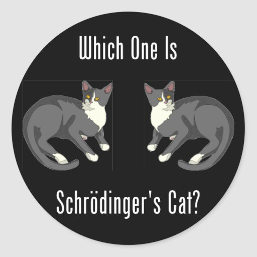 Which One Is Schrodinger's Cat? Classic Round Sticker
