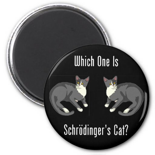 Which One Is Schrodinger's Cat? Fridge Magnets