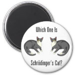 Which One Is Schrodinger's Cat? Magnets