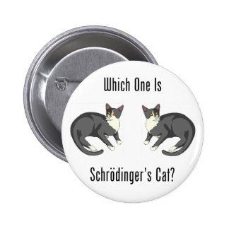 Which One Is Schrodinger's Cat? Pinback Button