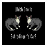 Which One Is Schrodinger's Cat? Posters