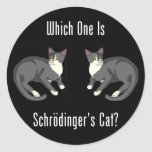 Which One Is Schrodinger's Cat? Stickers