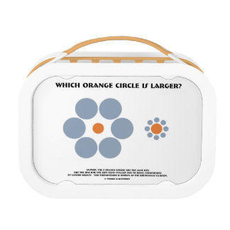 Which Orange Circle Is Larger? (Optical Illusion) Lunchbox