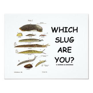 Which Slug Are You? Card