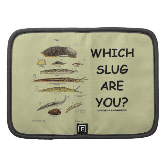 Which Slug Are You? (Different Types Of Slugs) Planner