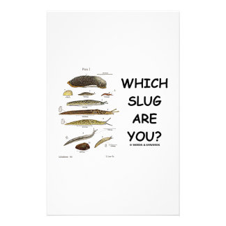 Which Slug Are You? (Different Types Of Slugs) Stationery