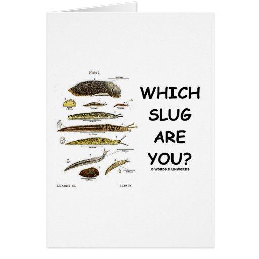 Which Slug Are You? Greeting Card