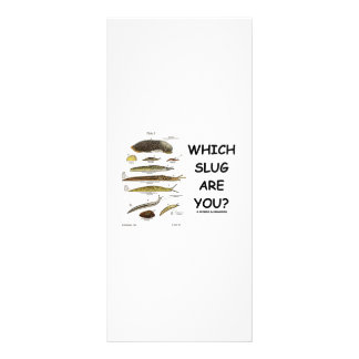Which Slug Are You? Personalized Rack Card
