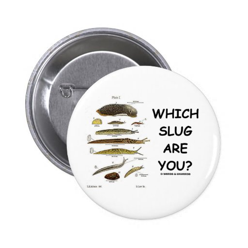 Which Slug Are You? Pinback Buttons