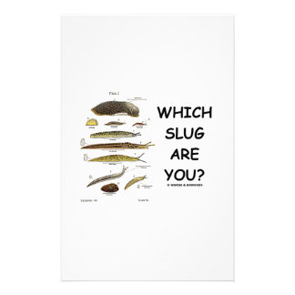 Which Slug Are You? Stationery Paper