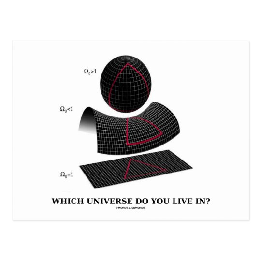 Which Universe Do You Live In? (Physics Humor) Postcard