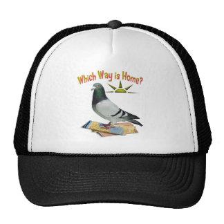Which Way is Home? Pigeon Art Cap Trucker Hat