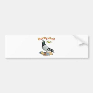 Which Way is Home? Pigeon Art Car Bumper Sticker