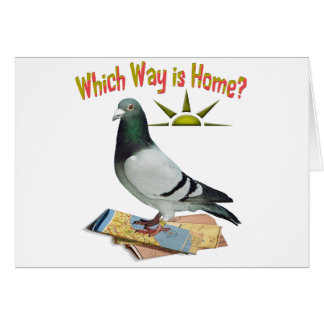 Which Way is Home? Pigeon Art Card