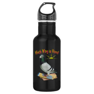 Which Way is Home? Pigeon Art Stainless Steel Water Bottle