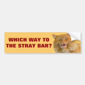 Which Way To the Stray Bar? Bumper Sticker