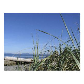Whidbey Island 5 Postcard