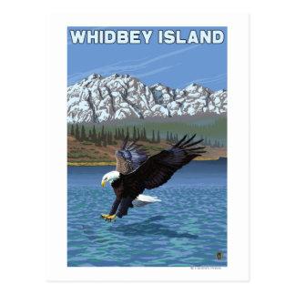 Whidbey Island, WashingtonEagle Fishing Postcard