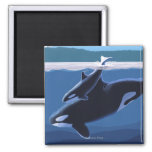 Whidbey Island, WashingtonOrca and Calf 2 Inch Square Magnet