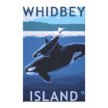 Whidbey Island, WashingtonOrca and Calf Canvas Print