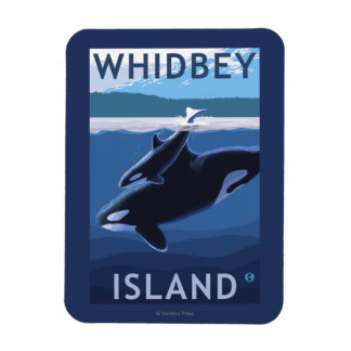Whidbey Island, WashingtonOrca and Calf Magnet