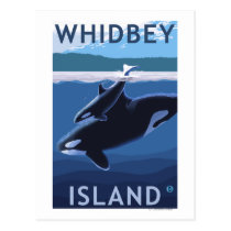 Whidbey Island, WashingtonOrca and Calf Postcard