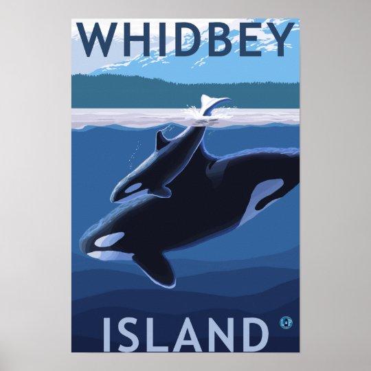 Whidbey Island, WashingtonOrca and Calf Poster