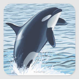 Whidbey Island, WashingtonOrca Jumping Square Sticker