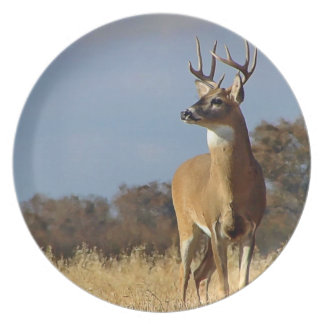 Whietail Buck Plate