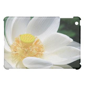 While Lotus iPad Mini Covers