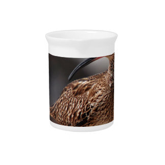 Whimbrel Beverage Pitcher