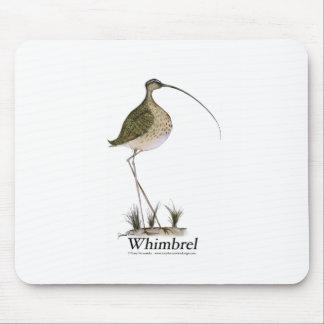 Whimbrel bird, tony fernandes mouse pad