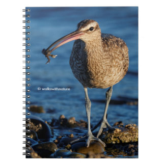 Whimbrel with Sushi Notebook