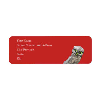 Whimsical and Adorable Blue Burrowing Owl Art Label