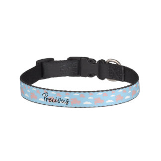 Whimsical Flying Pigs Pet Collar