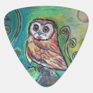 Whimsical Owl Guitar Pick