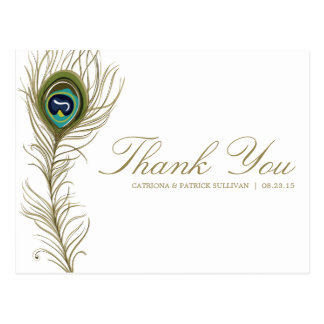 Whimsical Peacock Feather Thank You Postcard