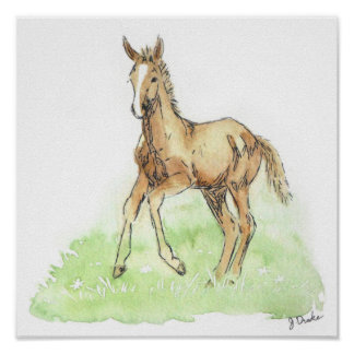Whimsical Spring Horse Foal Poster