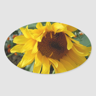 Whimsical Sunflower Stickers