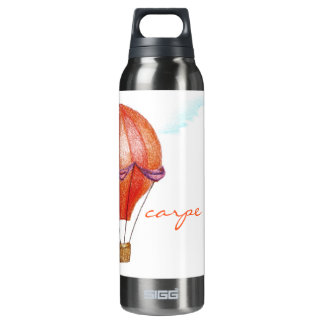 Whimsical Vintage Hot Air Balloon Insulated Water Bottle
