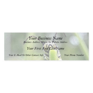 Whimsical Young Monarch Butterfly Caterpillar Business Card Template