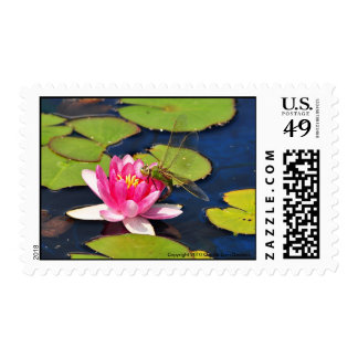 'Whimsy' Postage
