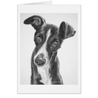 Whippet Black with White Blaze Card