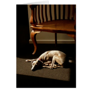 Whippet! Card